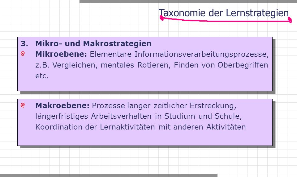 3. Mikro- und Makrostrategien Mikroebene: Elementare Informationsverarbeitungsprozesse, z.B.