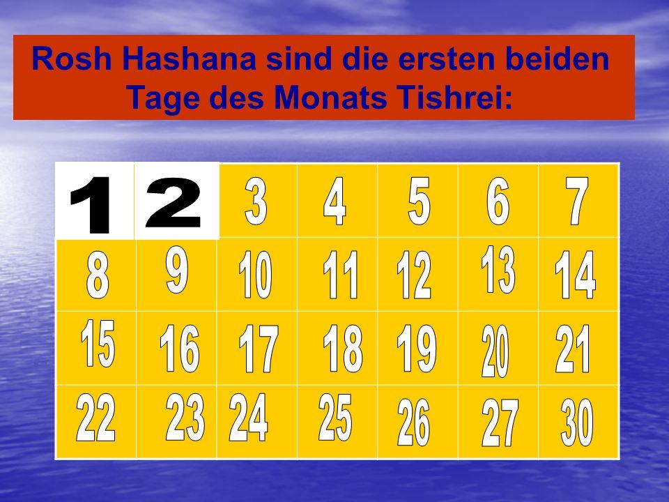 Kislev Tamuz Shvat Nisan Sivan Iyar Av Elul Adar cheshvan Der erste Monat des Jahres im Jüdentum Tishrei 2007 September 13 Tevet Jahr 5769: 30.09.2008