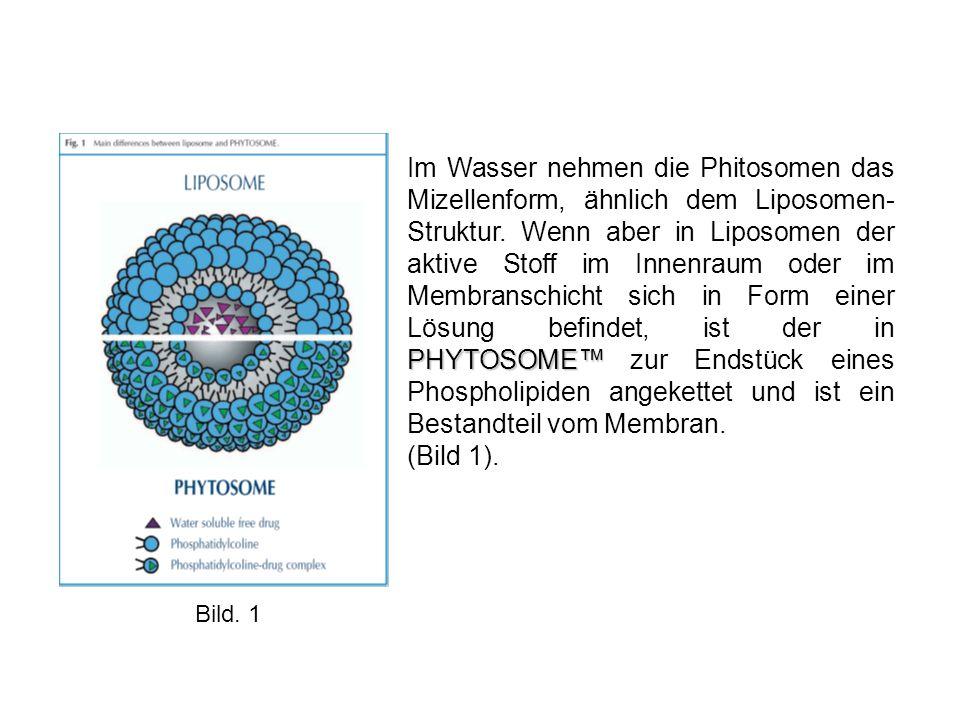 PHYTOSOME™ Im Wasser nehmen die Phitosomen das Mizellenform, ähnlich dem Liposomen- Struktur.