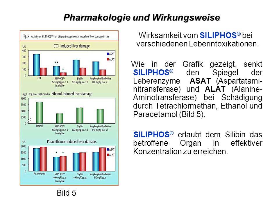 Wirksamkeit vom SILIPHOS ® bei verschiedenen Leberintoxikationen.