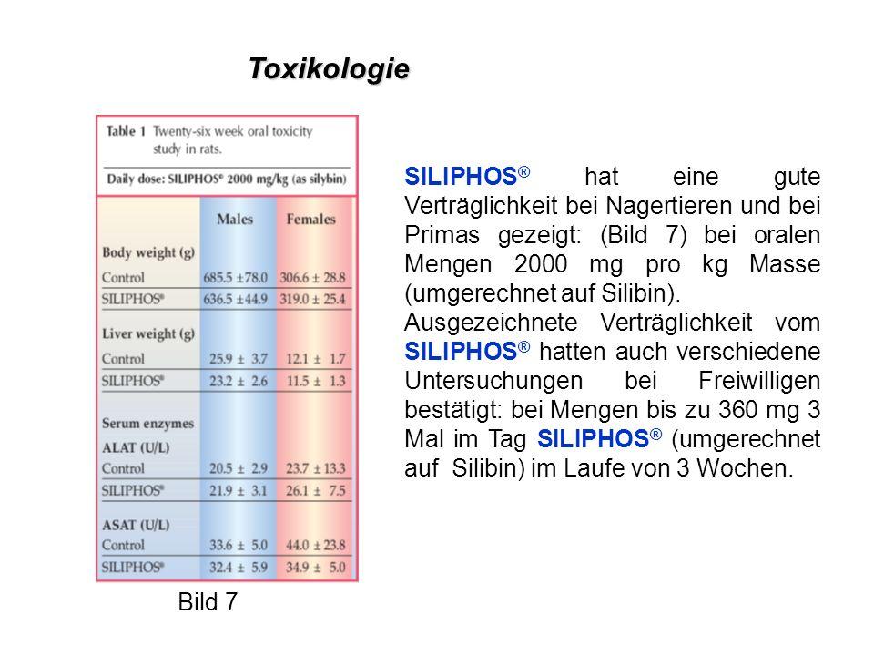 SILIPHOS ® hat eine gute Verträglichkeit bei Nagertieren und bei Primas gezeigt: (Bild 7) bei oralen Mengen 2000 mg pro kg Masse (umgerechnet auf Silibin).