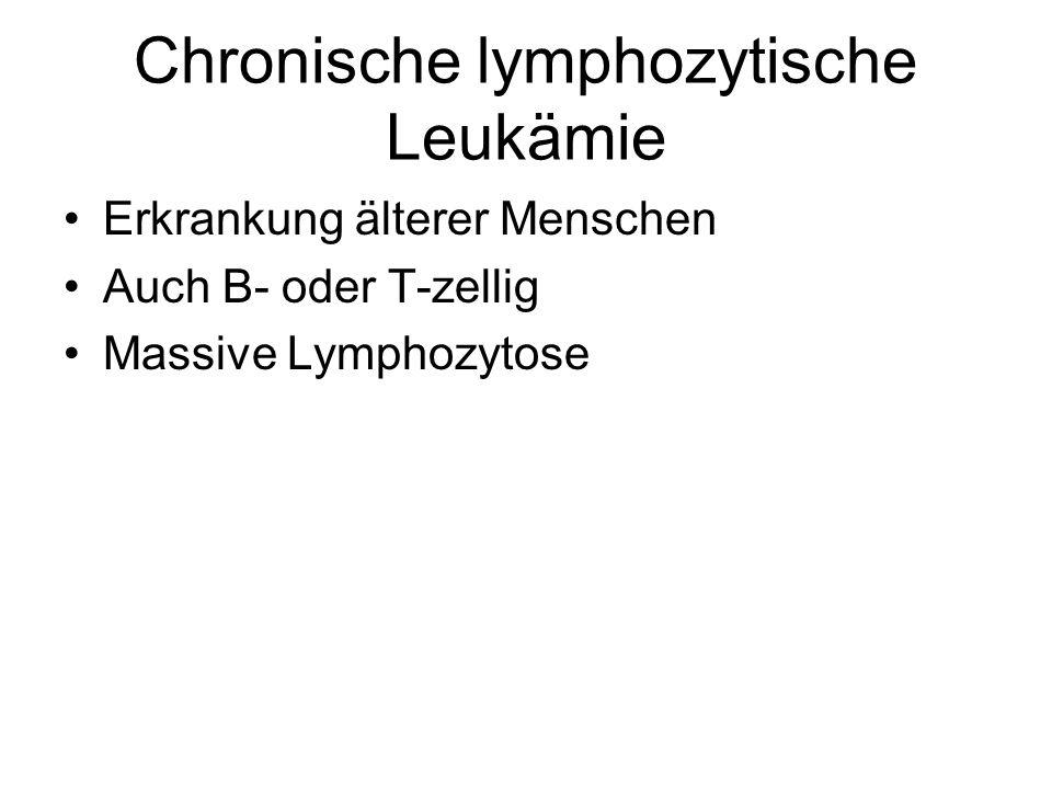 Chronische lymphozytische Leukämie Erkrankung älterer Menschen Auch B- oder T-zellig Massive Lymphozytose