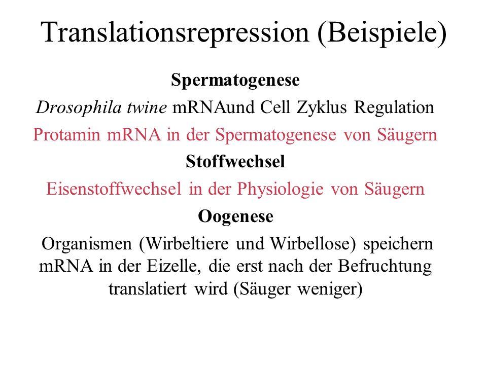 Fig.1aus: Steger, Klaus (1999) Transcriptional and translational regulation of gene expression in haploid spermatids.
