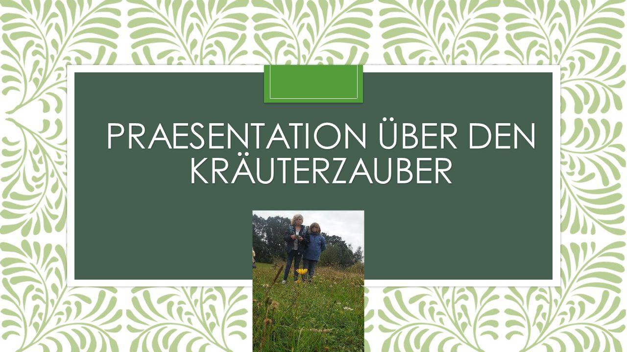 PRAESENTATION ÜBER DEN KRÄUTERZAUBER