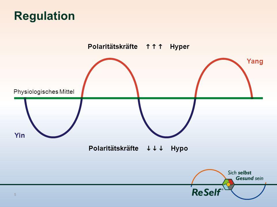 Regulation 5 Polaritätskräfte    Hyper Physiologisches Mittel Polaritätskräfte    Hypo Yin Yang