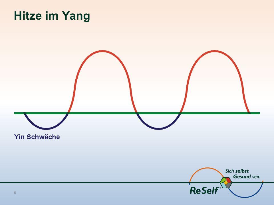 Hitze im Yang 6 Yin Schwäche