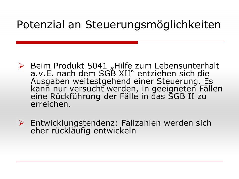 """Potenzial an Steuerungsmöglichkeiten  Beim Produkt 5041 """"Hilfe zum Lebensunterhalt a.v.E."""