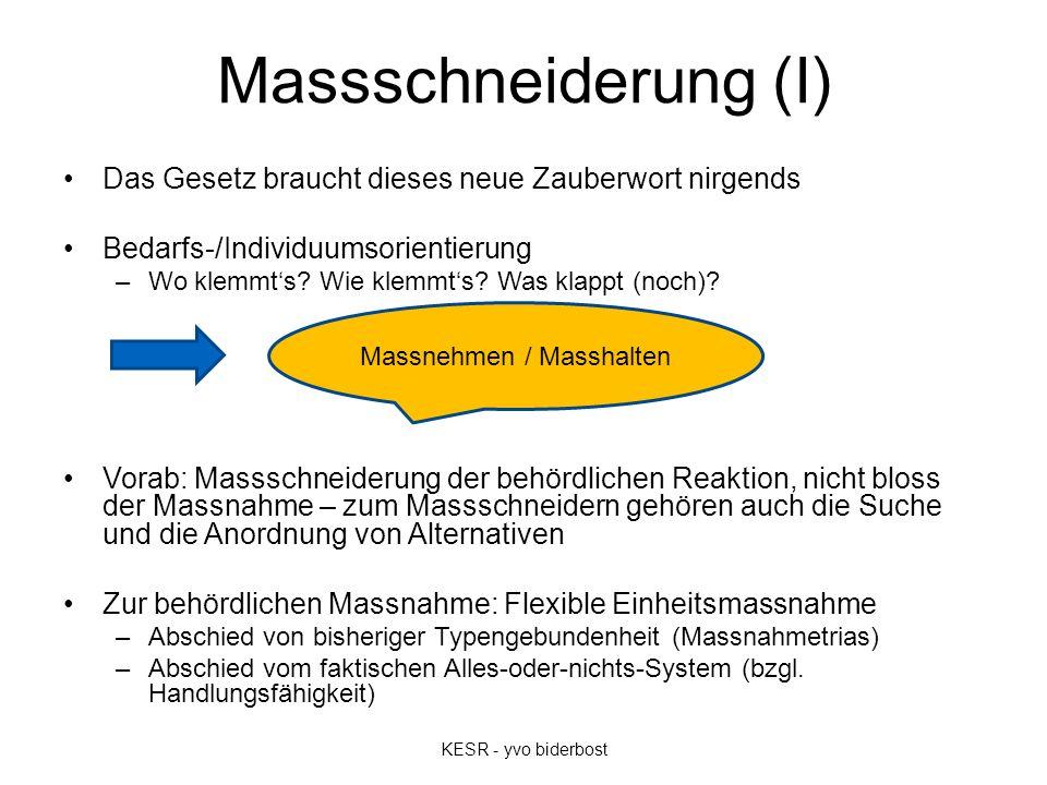 Massschneiderung (I) Das Gesetz braucht dieses neue Zauberwort nirgends Bedarfs-/Individuumsorientierung –Wo klemmt's? Wie klemmt's? Was klappt (noch)