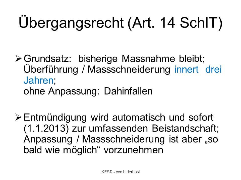 Übergangsrecht (Art.