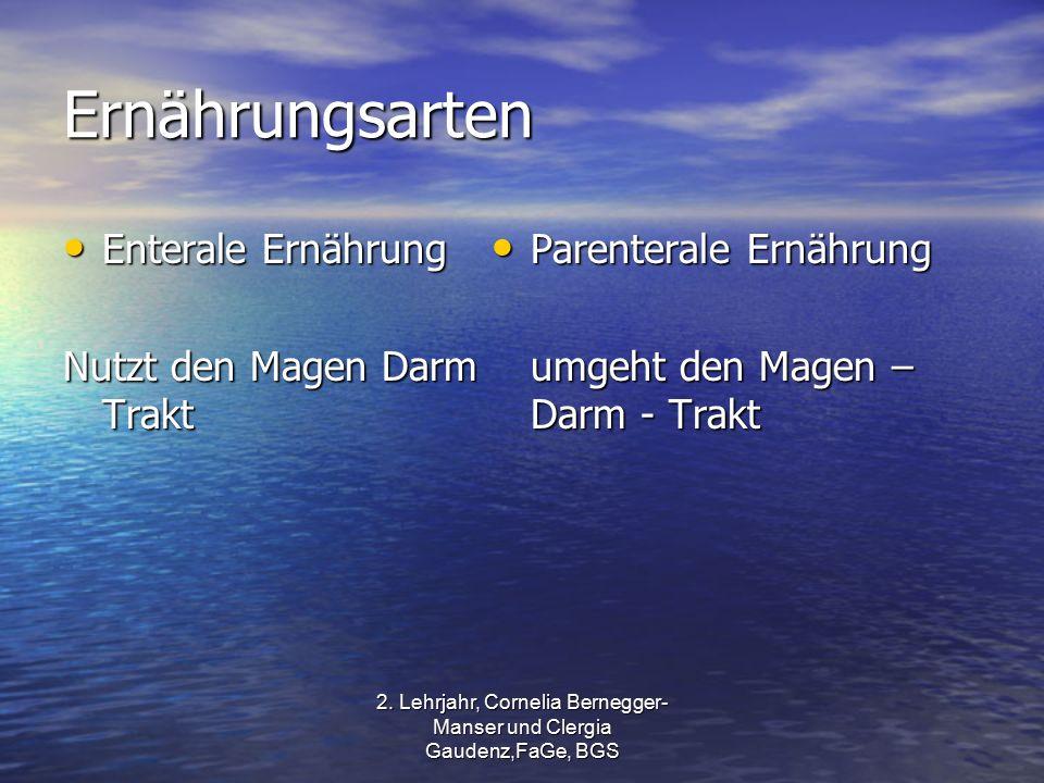 2. Lehrjahr, Cornelia Bernegger- Manser und Clergia Gaudenz,FaGe, BGS Ernährungsarten Enterale Ernährung Enterale Ernährung Nutzt den Magen Darm Trakt
