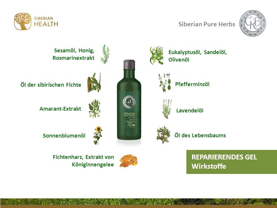 Siberian Pure Herbs Pfefferminzöl Öl des Lebensbaums Lavendelöl Amarant-Extrakt Öl der sibirischen Fichte Sonnenblumenöl REPARIERENDES GEL Wirkstoffe