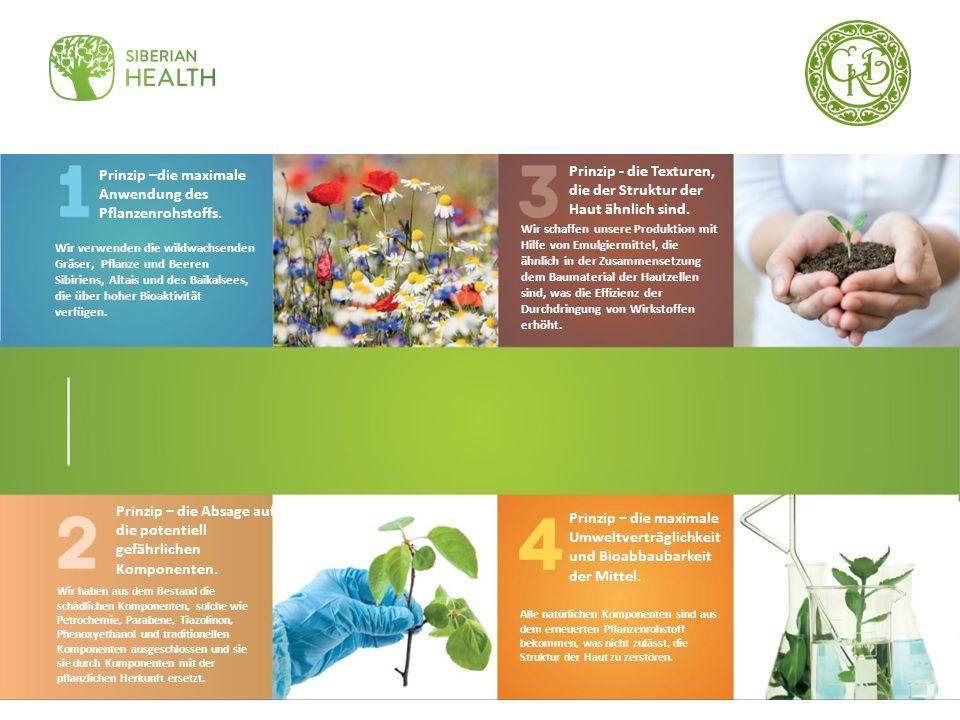 Prinzip –die maximale Anwendung des Pflanzenrohstoffs. Wir verwenden die wildwachsenden Gräser, Pflanze und Beeren Sibiriens, Altais und des Baikalsee