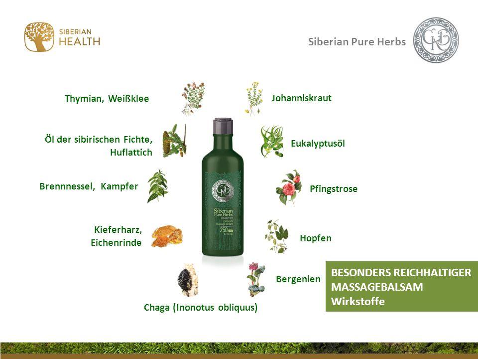 Siberian Pure Herbs Eukalyptusöl Johanniskraut Chaga (Inonotus obliquus) Bergenien Hopfen Pfingstrose Thymian, Weißklee Brennnessel, Kampfer Öl der si