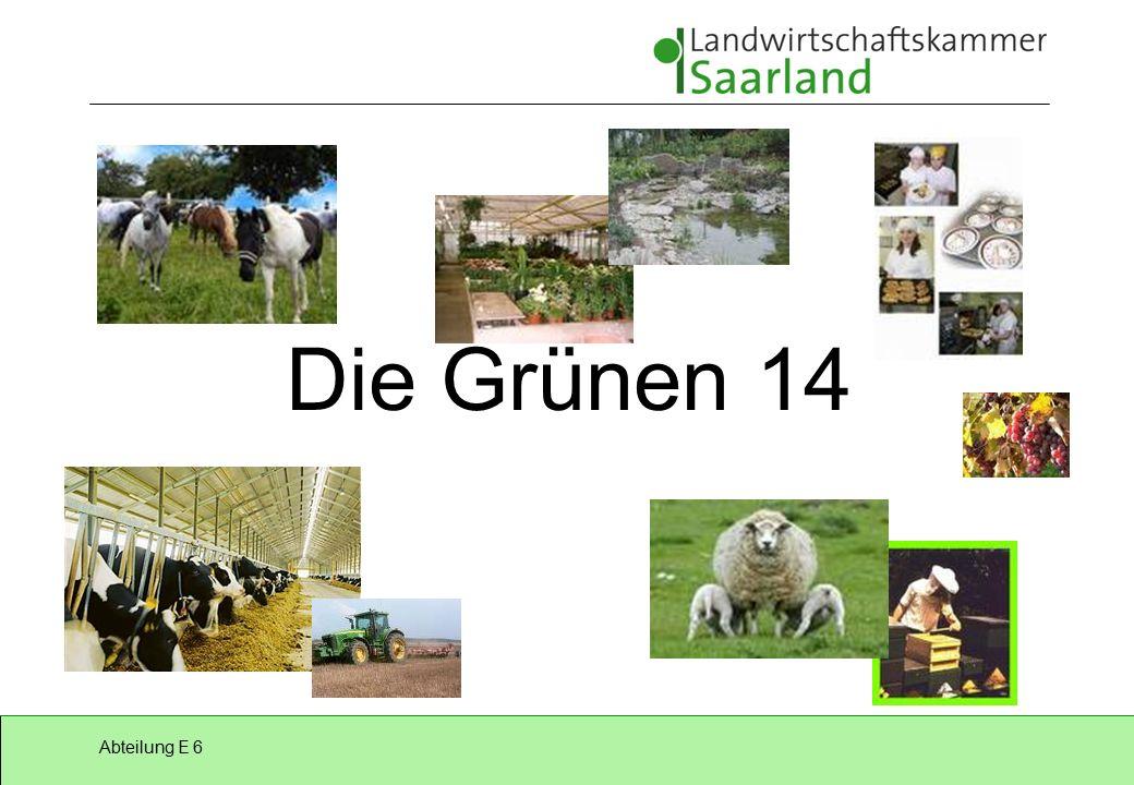 Abteilung E 6 Die Grünen 14