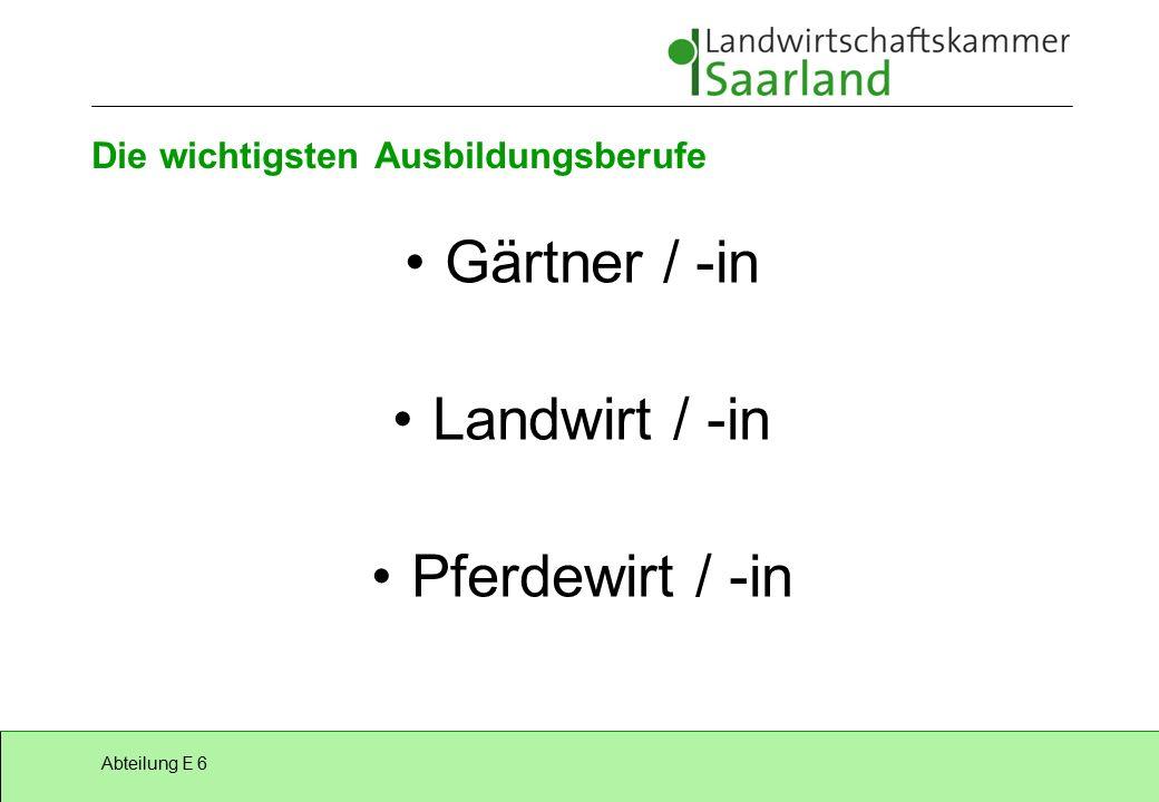Abteilung E 6 Die wichtigsten Ausbildungsberufe Gärtner / -in Landwirt / -in Pferdewirt / -in