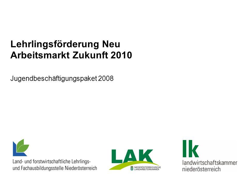 Lehrlingsförderung Neu Arbeitsmarkt Zukunft 2010 Jugendbeschäftigungspaket 2008