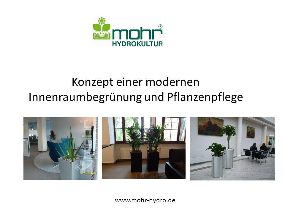 Konzept einer modernen Innenraumbegrünung und Pflanzenpflege www.mohr-hydro.de