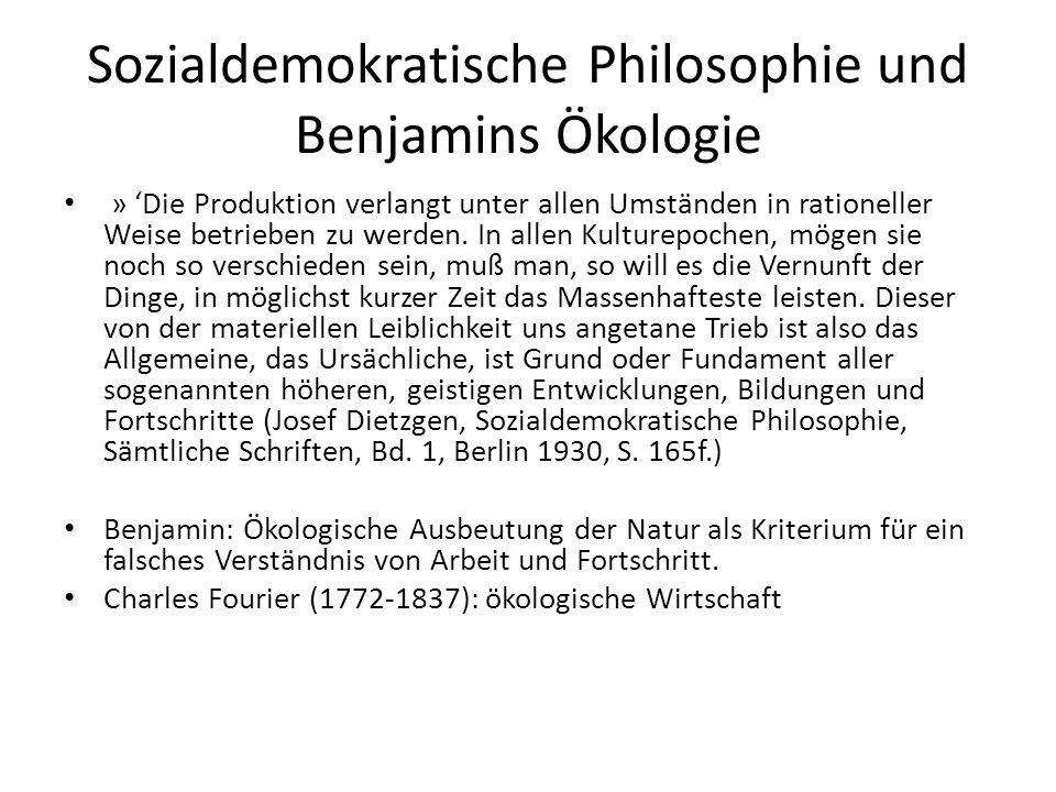 Sozialdemokratische Philosophie und Benjamins Ökologie » 'Die Produktion verlangt unter allen Umständen in rationeller Weise betrieben zu werden.