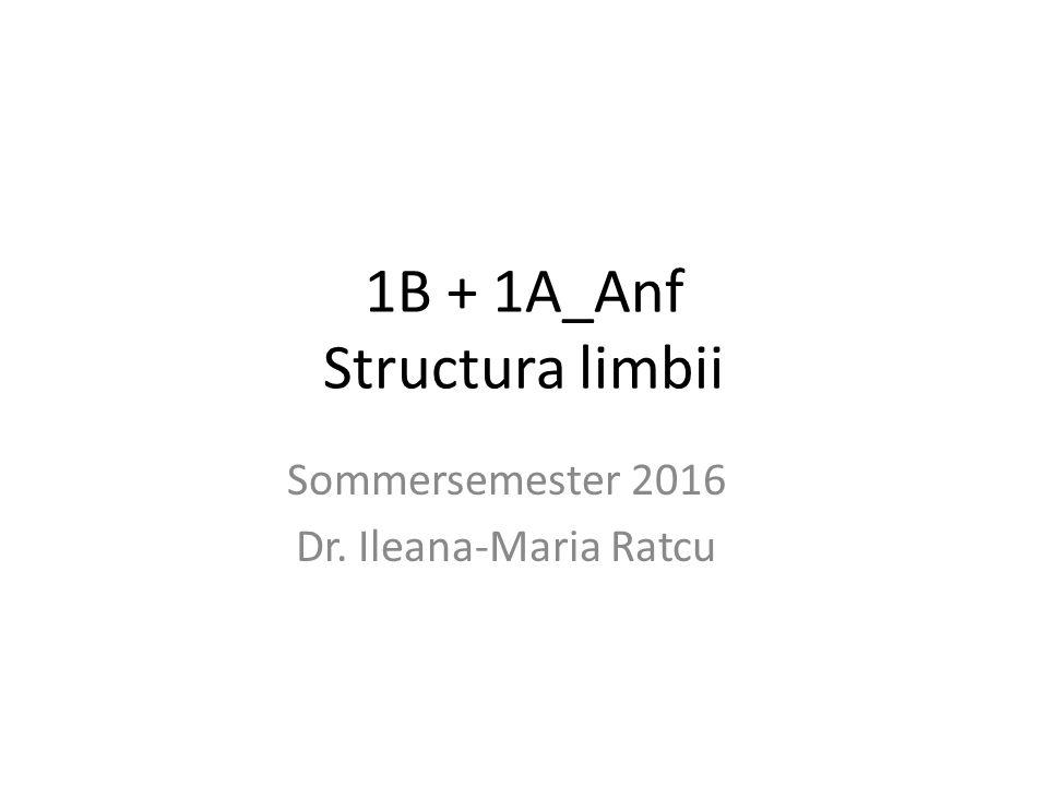 1B + 1A_Anf Structura limbii Sommersemester 2016 Dr. Ileana-Maria Ratcu