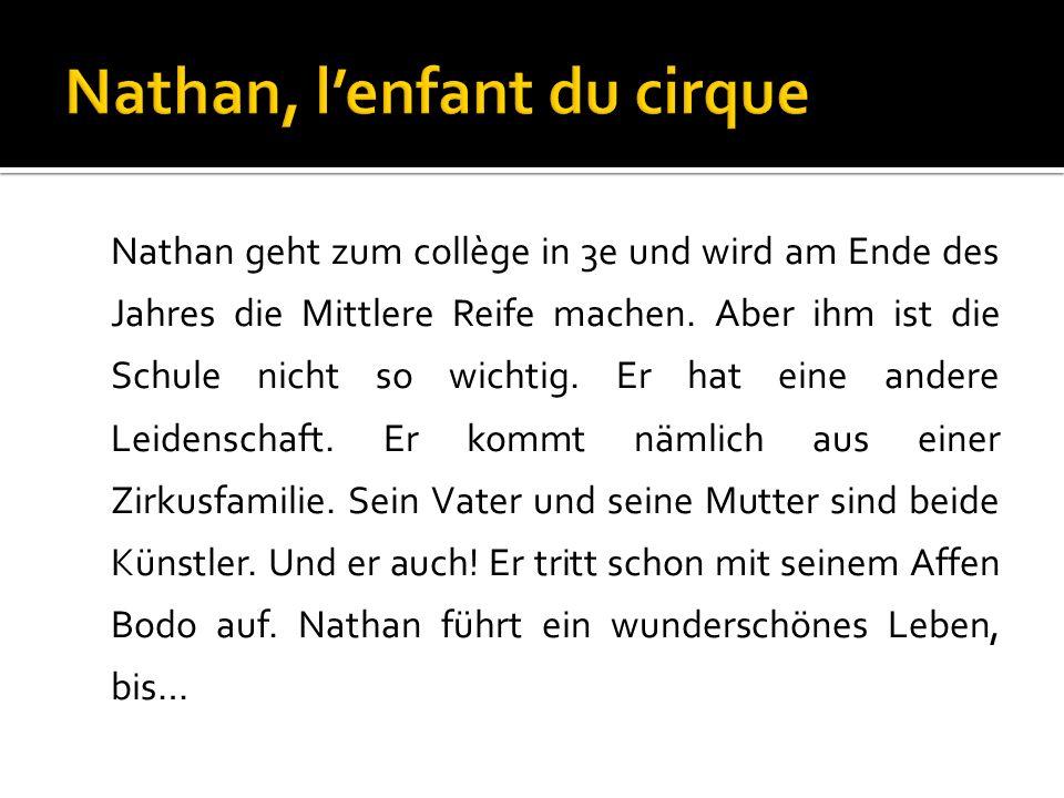 Nathan geht zum collège in 3e und wird am Ende des Jahres die Mittlere Reife machen.