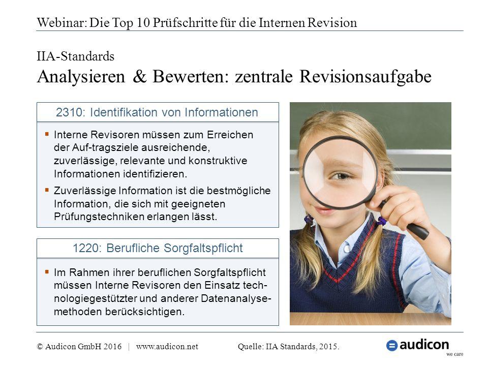 IIA-Standards Analysieren & Bewerten: zentrale Revisionsaufgabe Webinar: Die Top 10 Prüfschritte für die Internen Revision  Interne Revisoren müssen zum Erreichen der Auf-tragsziele ausreichende, zuverlässige, relevante und konstruktive Informationen identifizieren.