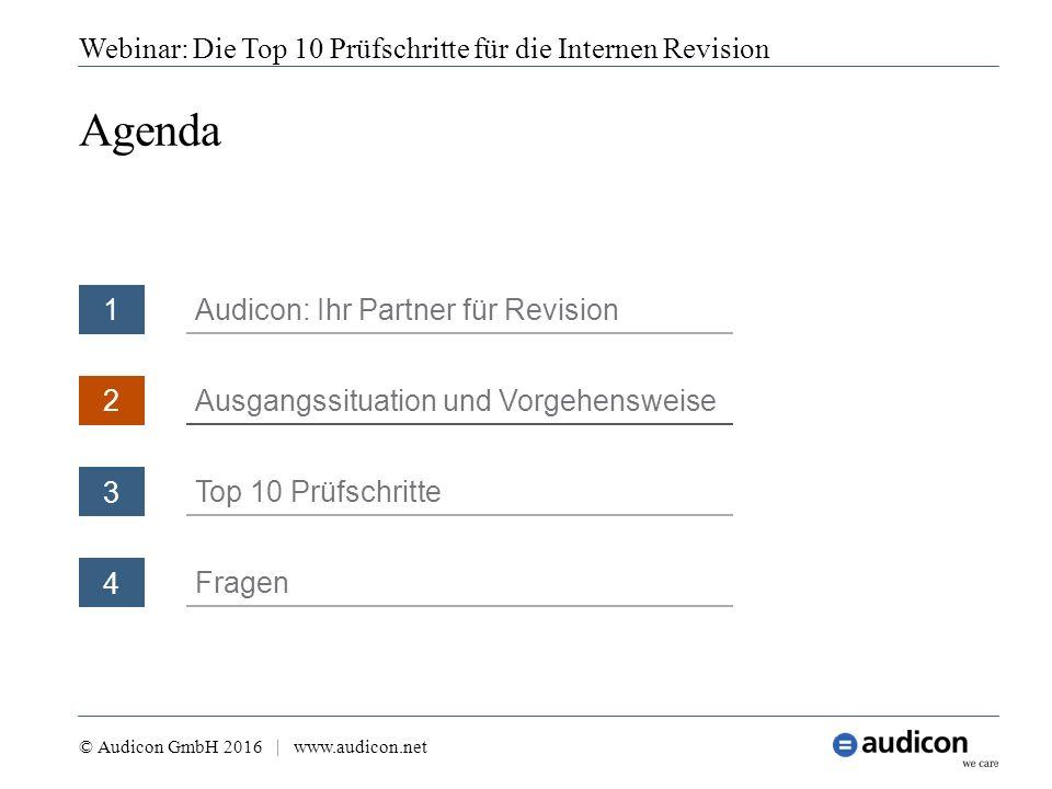 Webinar: Die Top 10 Prüfschritte für die Internen Revision © Audicon GmbH 2016 | www.audicon.net Kriterien für die heutige Auswahl Auf welcher Basis wurden die Prüfschritte ausgewählt.