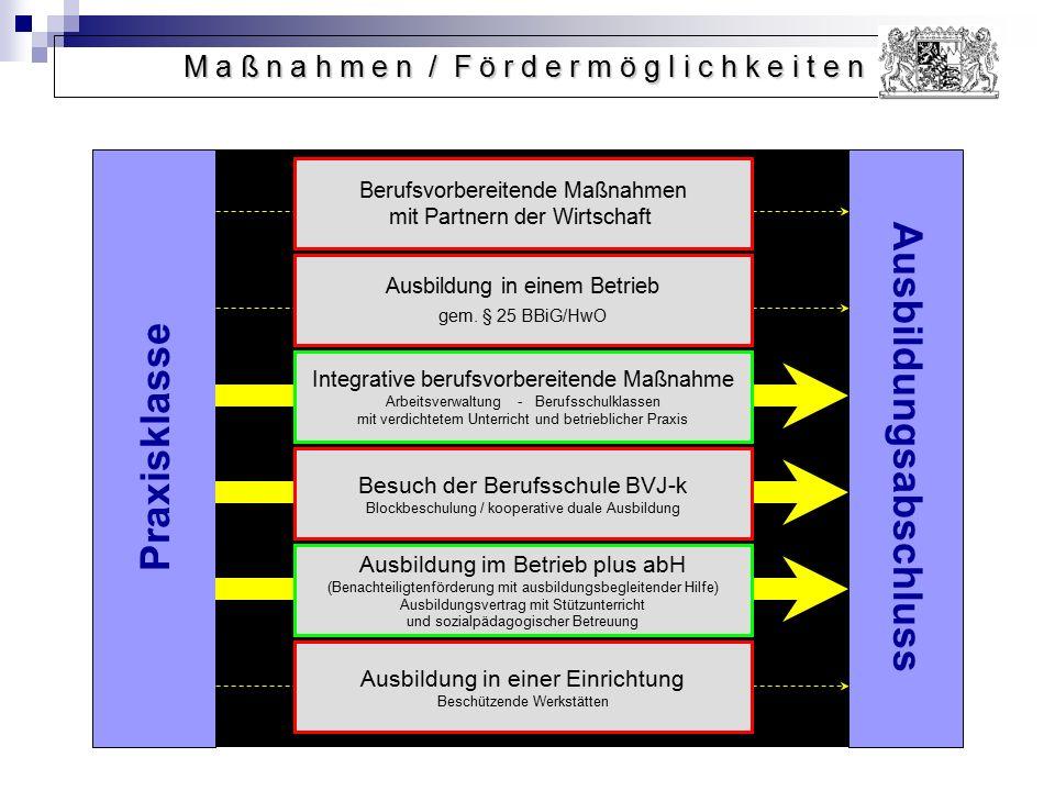 Ausbildungsabschluss Praxisklasse Berufsvorbereitende Maßnahmen mit Partnern der Wirtschaft Ausbildung in einem Betrieb gem. § 25 BBiG/HwO Integrative
