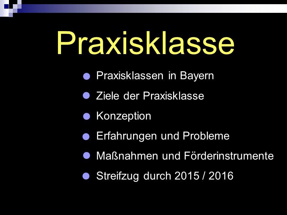 Praxisklasse Praxisklassen in Bayern Ziele der Praxisklasse Konzeption Erfahrungen und Probleme Maßnahmen und Förderinstrumente Streifzug durch 2015 /