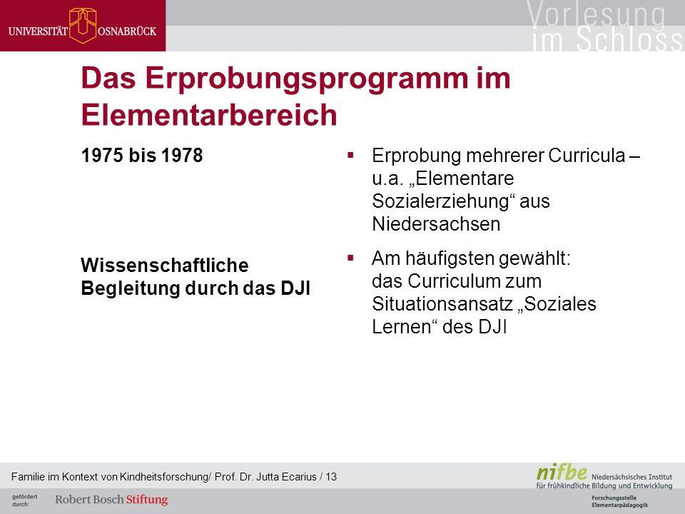 """Das Erprobungsprogramm im Elementarbereich 1975 bis 1978 Wissenschaftliche Begleitung durch das DJI  Erprobung mehrerer Curricula – u.a. """"Elementare"""