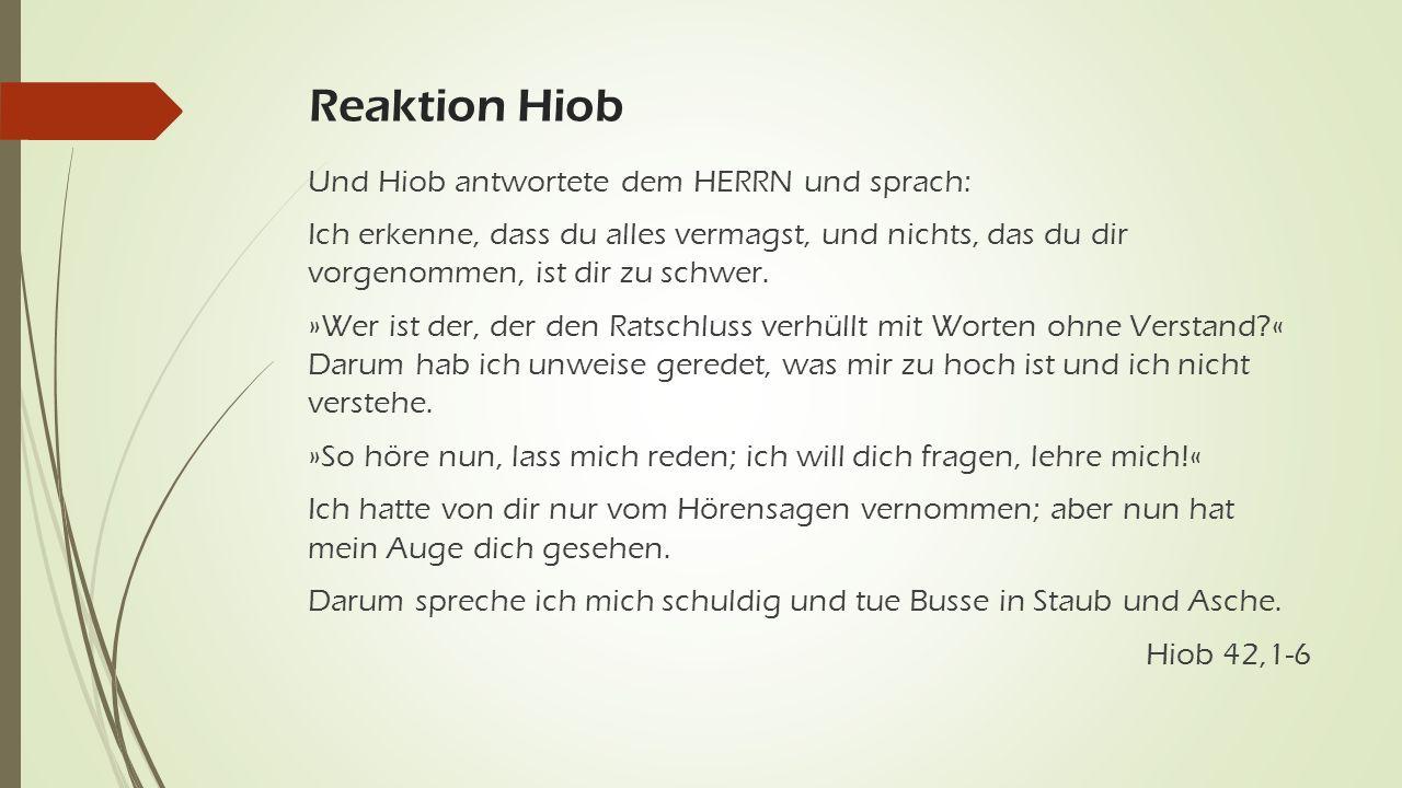 Reaktion Hiob Und Hiob antwortete dem HERRN und sprach: Ich erkenne, dass du alles vermagst, und nichts, das du dir vorgenommen, ist dir zu schwer.