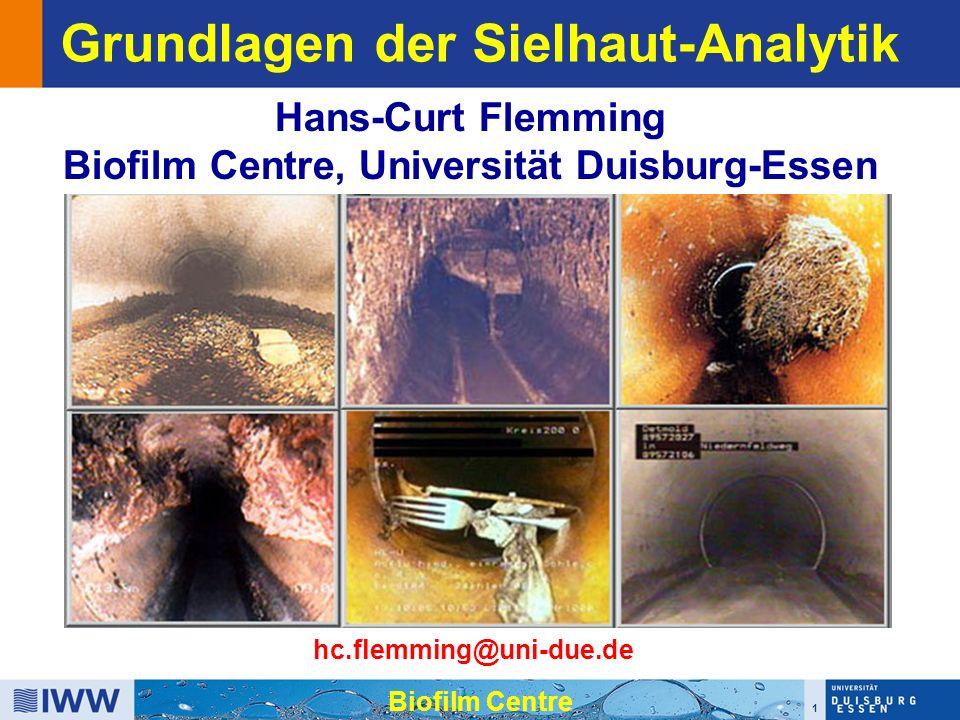 1 Biofilm Centre Grundlagen der Sielhaut-Analytik Hans-Curt Flemming Biofilm Centre, Universität Duisburg-Essen hc.flemming@uni-due.de