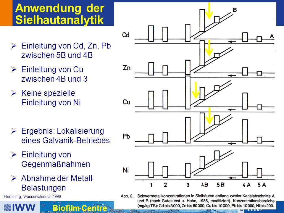 12 Biofilm Centre Flemming, Wasserkalender 1990 Anwendung der Sielhautanalytik  Einleitung von Cd, Zn, Pb zwischen 5B und 4B  Einleitung von Cu zwischen 4B und 3  Keine spezielle Einleitung von Ni  Ergebnis: Lokalisierung eines Galvanik-Betriebes  Einleitung von Gegenmaßnahmen  Abnahme der Metall- Belastungen