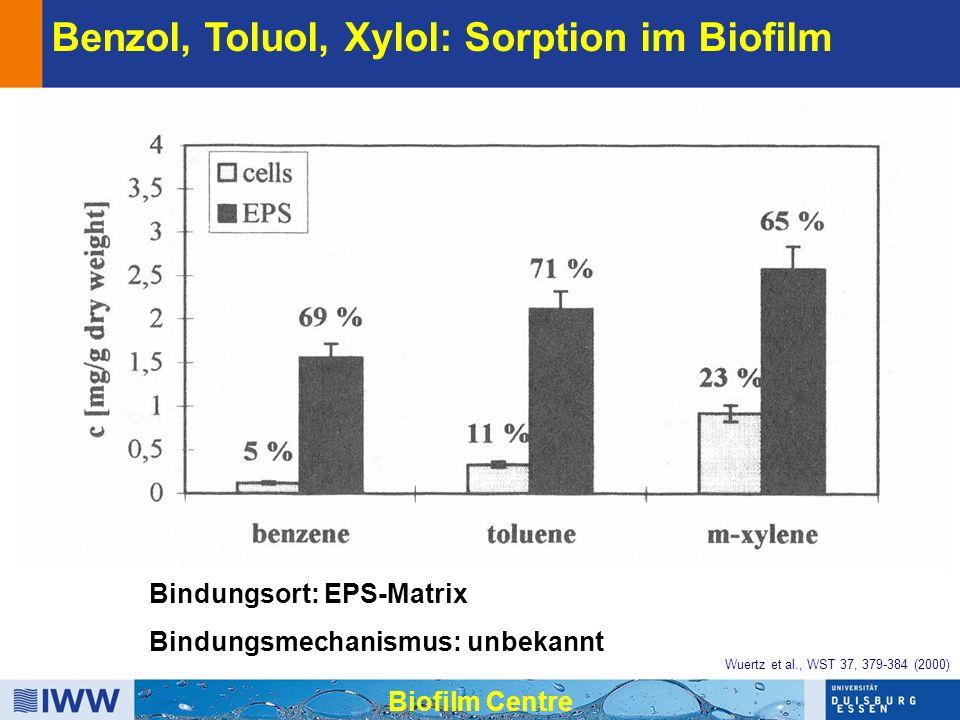 Bindungsort: EPS-Matrix Bindungsmechanismus: unbekannt Benzol, Toluol, Xylol: Sorption im Biofilm Biofilm Centre Wuertz et al., WST 37, 379-384 (2000)
