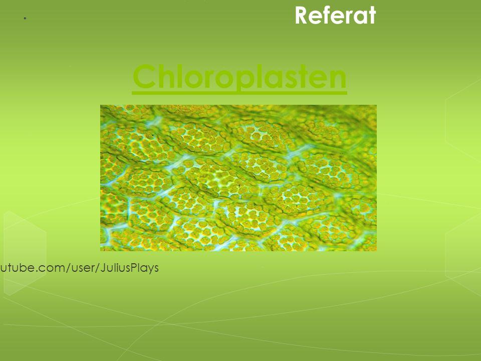 Chloroplasten Von: youtube.com/user/JuliusPlays Referat
