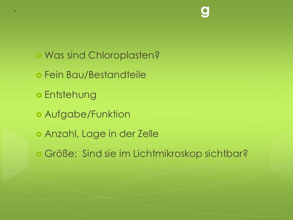 Gliederun g  Was sind Chloroplasten?  Fein Bau/Bestandteile  Entstehung  Aufgabe/Funktion  Anzahl, Lage in der Zelle  Größe; Sind sie im Lichtmi
