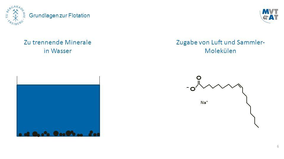 6 Grundlagen zur Flotation Zu trennende Minerale in Wasser Zugabe von Luft und Sammler- Molekülen Na +