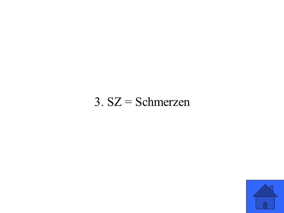 3. SZ = Schmerzen