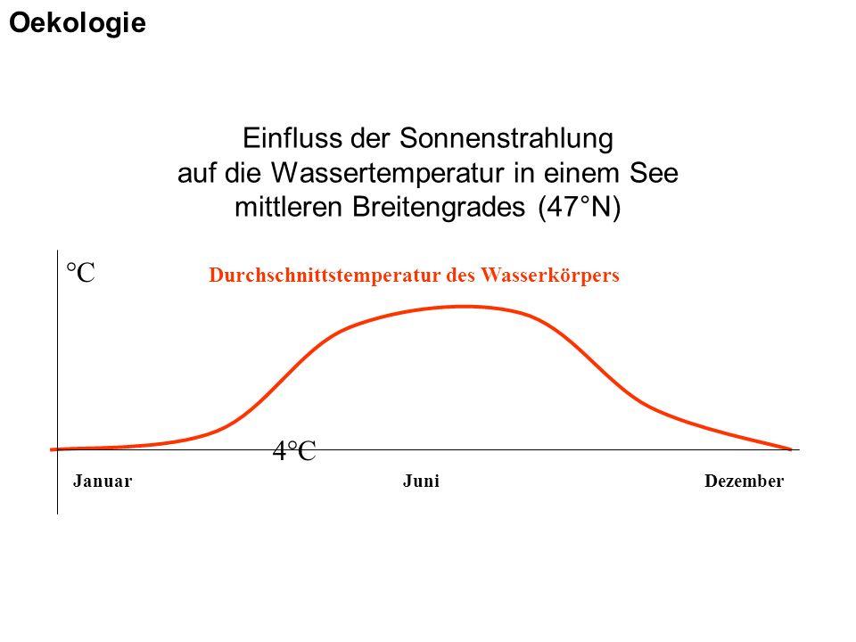Einfluss der Sonnenstrahlung auf die Wassertemperatur in einem See mittleren Breitengrades (47°N) JanuarJuniDezember Durchschnittstemperatur des Wasse