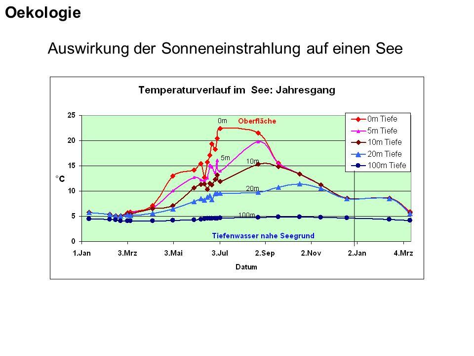 Auswirkung der Sonneneinstrahlung auf einen See Oekologie