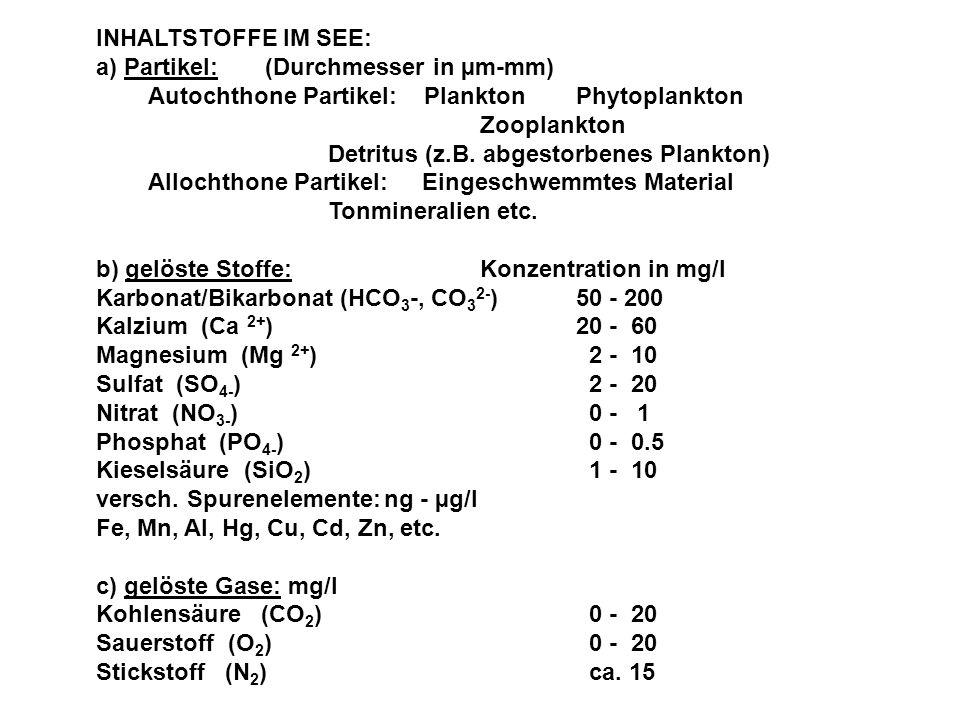 INHALTSTOFFE IM SEE: a) Partikel: (Durchmesser in µm-mm) Autochthone Partikel: Plankton Phytoplankton Zooplankton Detritus (z.B. abgestorbenes Plankto