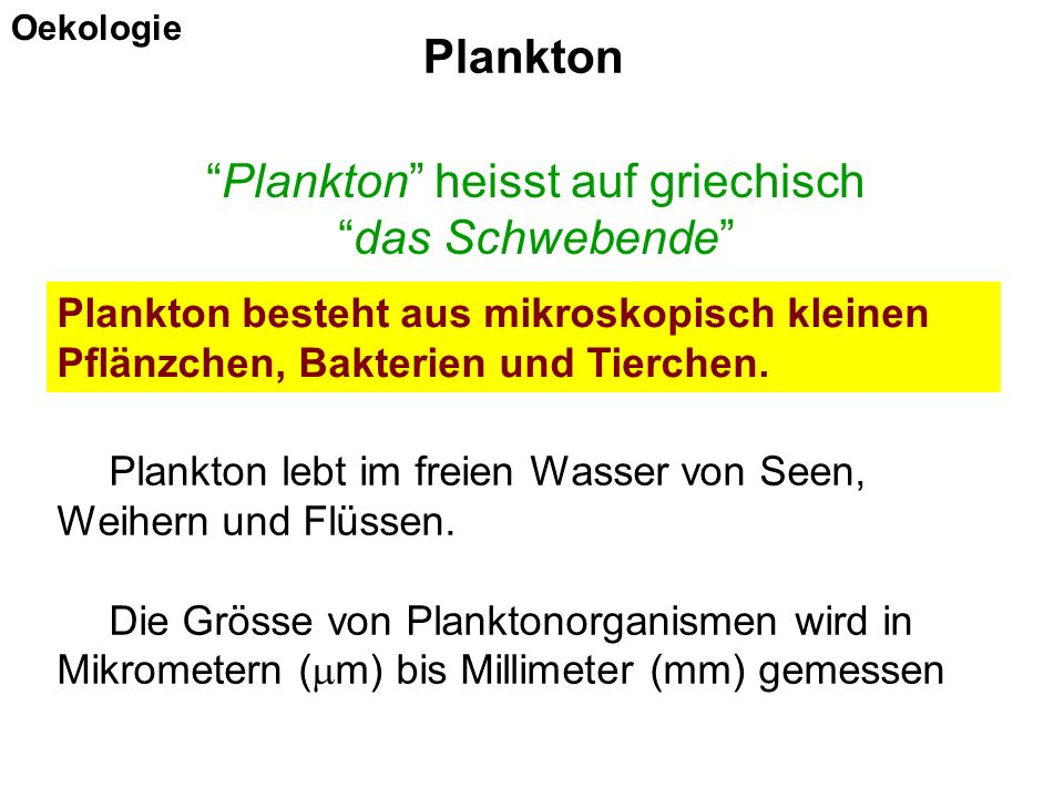 Plankton lebt im freien Wasser von Seen, Weihern und Flüssen. Die Grösse von Planktonorganismen wird in Mikrometern (  m) bis Millimeter (mm) gemesse