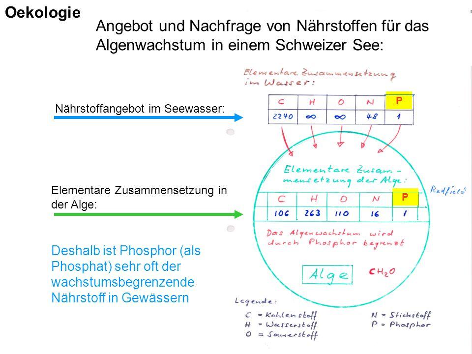 Nährstoffangebot im Seewasser: Elementare Zusammensetzung in der Alge: P P Angebot und Nachfrage von Nährstoffen für das Algenwachstum in einem Schweizer See: Deshalb ist Phosphor (als Phosphat) sehr oft der wachstumsbegrenzende Nährstoff in Gewässern Oekologie