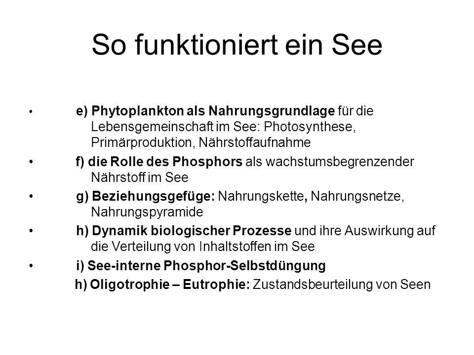 e) Phytoplankton als Nahrungsgrundlage für die Lebensgemeinschaft im See: Photosynthese, Primärproduktion, Nährstoffaufnahme f) die Rolle des Phosphors als wachstumsbegrenzender Nährstoff im See g) Beziehungsgefüge: Nahrungskette, Nahrungsnetze, Nahrungspyramide h) Dynamik biologischer Prozesse und ihre Auswirkung auf die Verteilung von Inhaltstoffen im See i) See-interne Phosphor-Selbstdüngung h) Oligotrophie – Eutrophie: Zustandsbeurteilung von Seen So funktioniert ein See