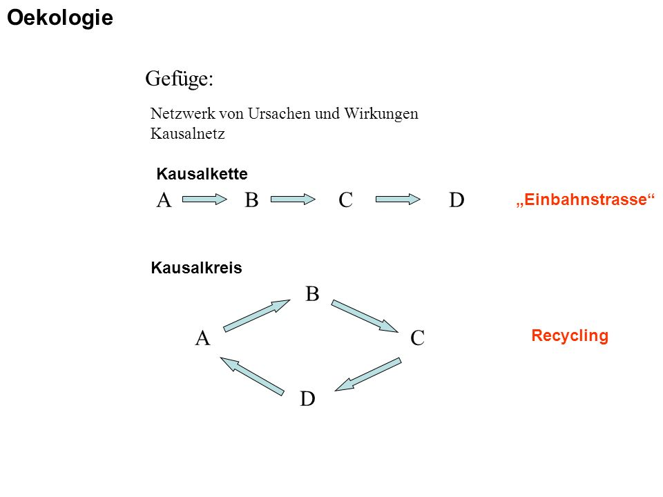 """Gefüge: Netzwerk von Ursachen und Wirkungen Kausalnetz ABCD Kausalkette A B C D Kausalkreis Recycling """"Einbahnstrasse"""" Oekologie"""