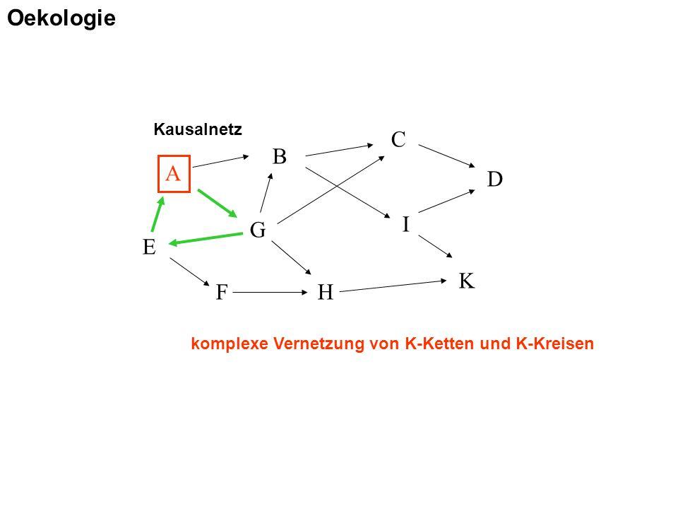 Kausalnetz A B C D E F G H I K komplexe Vernetzung von K-Ketten und K-Kreisen Oekologie
