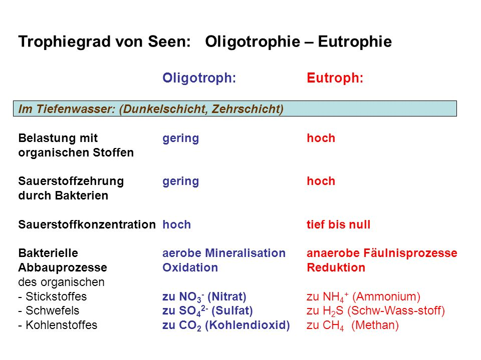 Trophiegrad von Seen: Oligotrophie – Eutrophie Oligotroph:Eutroph: Im Tiefenwasser: (Dunkelschicht, Zehrschicht) Belastung mitgeringhoch organischen Stoffen Sauerstoffzehrunggeringhoch durch Bakterien Sauerstoffkonzentrationhochtief bis null Bakterielleaerobe Mineralisationanaerobe Fäulnisprozesse AbbauprozesseOxidationReduktion des organischen - Stickstoffeszu NO 3 - (Nitrat)zu NH 4 + (Ammonium) - Schwefelszu SO 4 2- (Sulfat)zu H 2 S (Schw-Wass-stoff) - Kohlenstoffeszu CO 2 (Kohlendioxid)zu CH 4 (Methan)