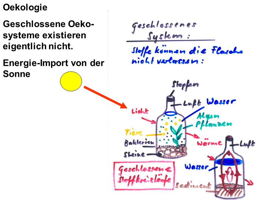 Geschlossene Oeko- systeme existieren eigentlich nicht. Energie-Import von der Sonne Oekologie