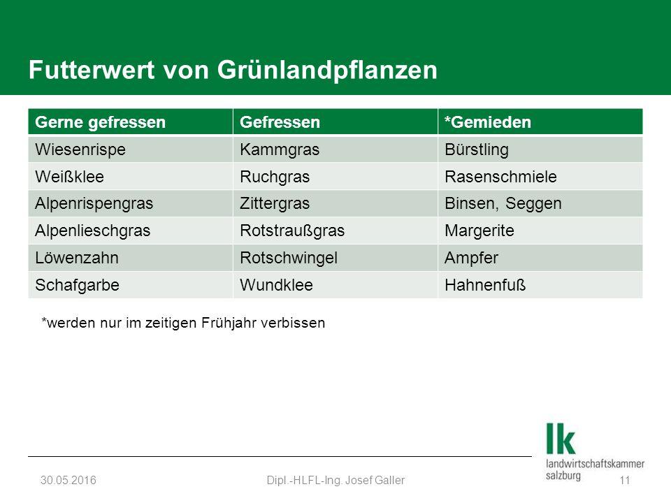 Futterwert von Grünlandpflanzen Gerne gefressenGefressen*Gemieden WiesenrispeKammgrasBürstling WeißkleeRuchgrasRasenschmiele AlpenrispengrasZittergras