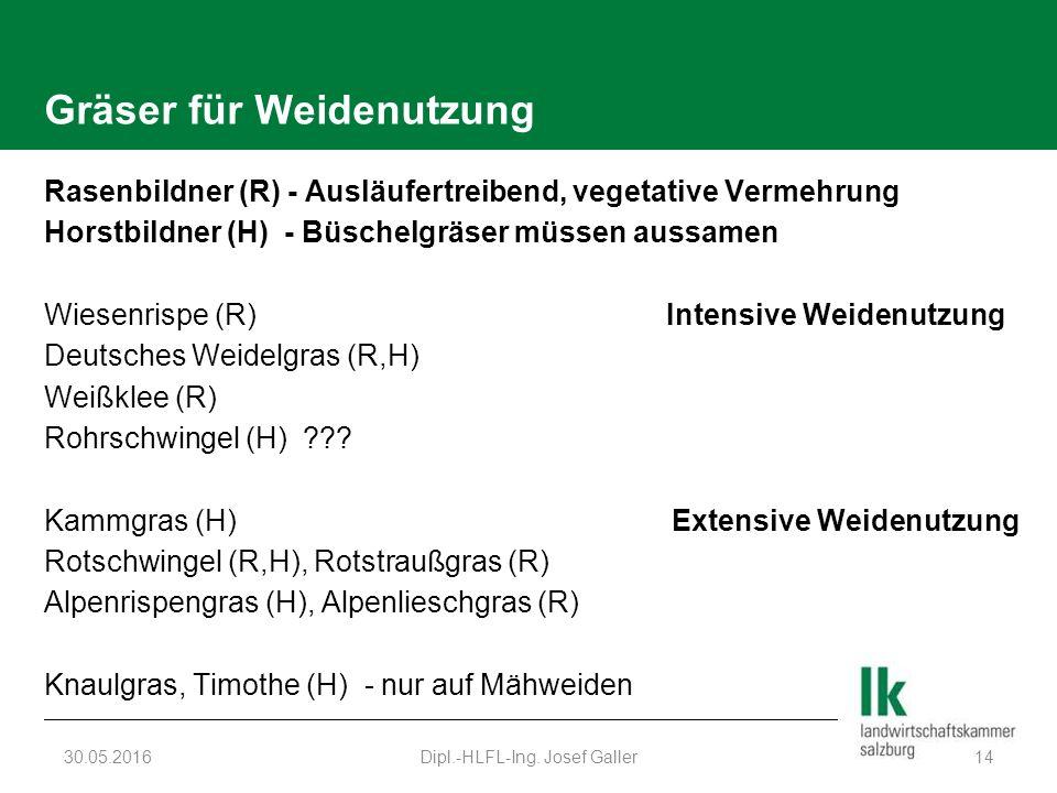Gräser für Weidenutzung Rasenbildner (R) - Ausläufertreibend, vegetative Vermehrung Horstbildner (H) - Büschelgräser müssen aussamen Wiesenrispe (R) Intensive Weidenutzung Deutsches Weidelgras (R,H) Weißklee (R) Rohrschwingel (H) .