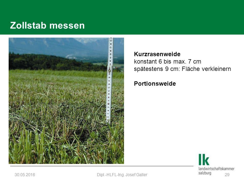 Zollstab messen 30.05.2016Dipl.-HLFL-Ing. Josef Galler29 Kurzrasenweide konstant 6 bis max.
